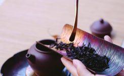 """TCM bijscholing """"Chinese voedingsleer en kruiden voor de dagelijkse klinische praktijk"""""""